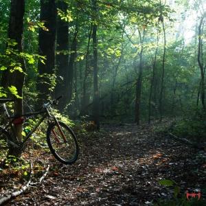 Bike-Ride-coverjp